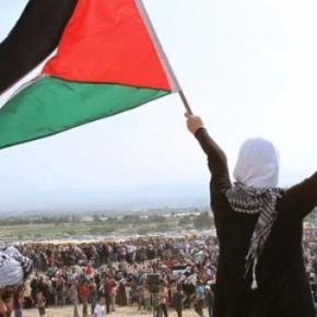 Conselho Mundial da Paz emite nota de repúdio contra lei israelense para o roubo de terraspalestinas