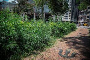 Porto Alegre: Do abandono ao mato, um retrato de praças e parques daCapital