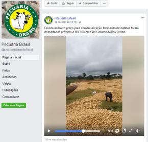 """Fazendeiros jogam fora toneladas de batatas, por que preço estaria """"baixo"""", enquanto a pobreza aumenta na cidade(Vídeo)"""