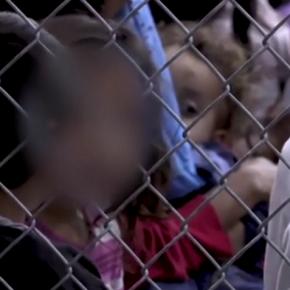 """Vergonha: Representante de Temer diz que governo  """"não pode pedir libertação"""" de crianças presas nosEUA"""