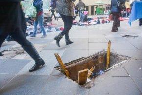 Porto Alegre:Tucano fora de seu habitat faz buracos por toda a cidade como se fossemninhos