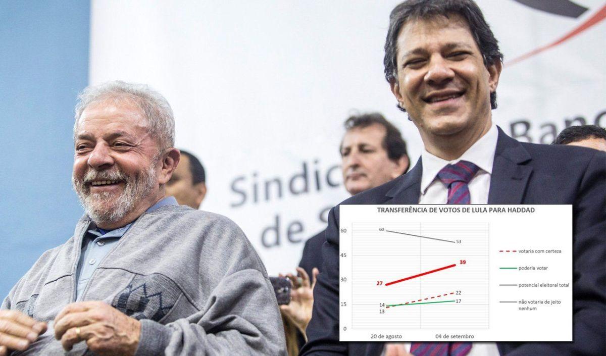 Como candidato de Lula, Haddad já lidera e pode ganhar no 1º turno