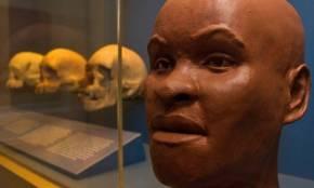 Antes Luzia aguentou 12 mil anos, mas não suportou 2 anos de governogolpista