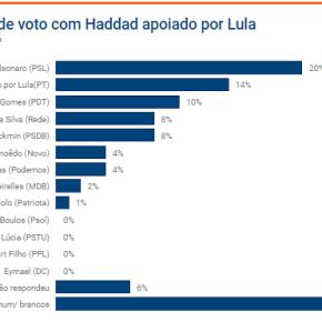 Sem Lula, Bolsonaro lidera com 20% seguido por Haddad com 14% , diz pesquisa da XPInvestimentos