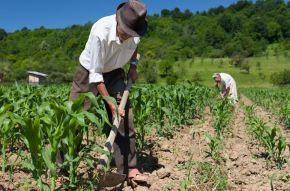 Absurdo: Medida Provisória de Bolsonaro ataca aposentadoria de trabalhadores rurais e já estavalendo