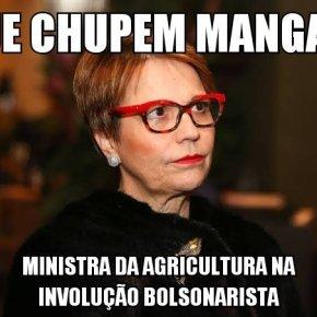 """Ministra da Agricultura diz que brasileiro não passa fome """"porque nós temos manga nas nossascidades"""""""