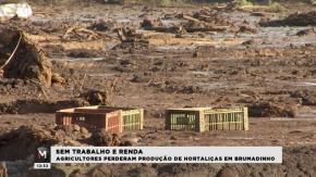 Governo diz que pobres atingidos em Brumadinho não devem mais receber BolsaFamília