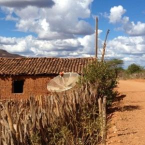 Bolsonaro impede que R$ 160 milhões da ONU cheguem a pequenos agricultores doNordeste