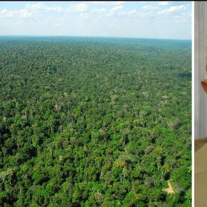 """Lula: """"Amazônia é do povo brasileiro e não refém das perversões dessegoverno"""""""