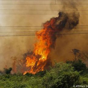 Tempos de Bolsonaro: Depois da Amazônia devastada pelo fogo,  chega a vez doPantanal