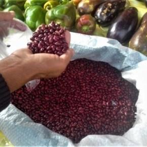 Acampamentos do MST doam 5 toneladas de alimentos em Castro e Ponta Grossa,Paraná