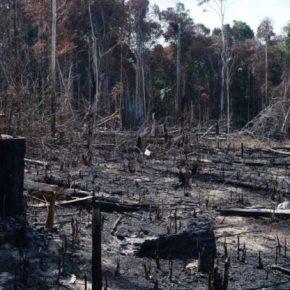 Militares ficam com meio bilhão de reais destinado àAmazônia