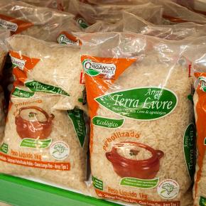 MST, maior Produtor de Arroz Orgânico, segue vendendo arroz a preçojusto