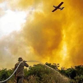 """Ao cortar orçamento  do Ibama,"""" presidente joga gasolina em um país em chamas"""", DizSenador"""