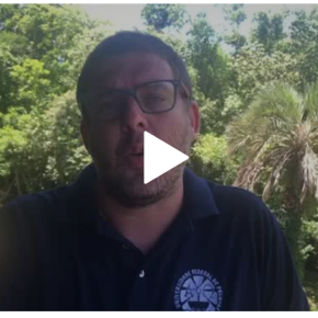 """Vídeo: Pedro Hallal, ex Reitor da UFPEL, põe Bibo Nunes em seu devido lugar: """"insignificante ebabaca""""!"""