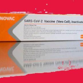 Vacina chinesa, em parceria com o Butantan, garantiu 100% de proteção contra casos graves daCovid