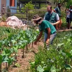Avião clandestino pulveriza veneno sobre Assentamento do MST em Nova Santa Rita, referência em ArrozAgroecológico