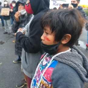 Retrocessos da decisão da justiça federal sobre a Terra Indígena Cantagalo, povo Guarani Mbya, no Rio Grande doSul